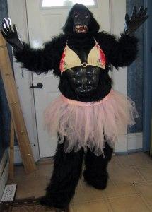 Funny Gorilla with bikini top and tutu